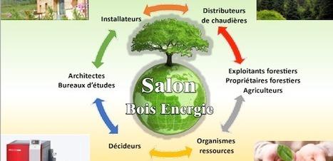 Salon bois-énergie STER à Tarbes les 19 et 20 février 2015 | conférence expos développement durable énergie | Scoop.it