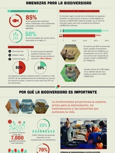 What's Happening to Biodiversity? | Visual.ly | Geography Links for EFL geography students | Scoop.it