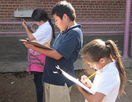 Tucson school uses garden, ecology projects to teach math | School Gardening Resources | Scoop.it