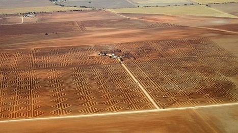Australian Farmer Combats Soil Erosion By Plowing Land into Giant Geometric Artwork | Le It e Amo ✪ | Scoop.it