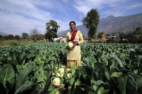 A guide to our future planet: how will climate change impact food security? | CCAFS: CGIAR research program on Climate Change, Agriculture and Food Security | Climate Smart Agriculture | Scoop.it