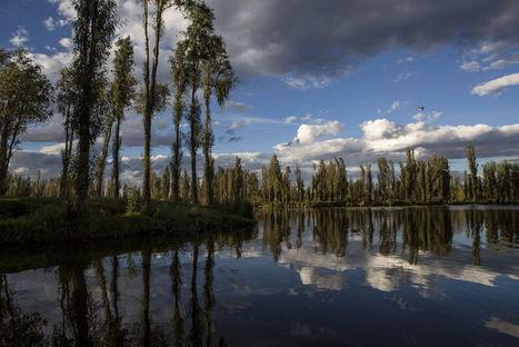 Xochimilco, le poumon de Mexico menacé par l'urbanisation sauvage | Biodiversité & Relations Homme - Nature - Environnement : Un Scoop.it du Muséum de Toulouse | Scoop.it