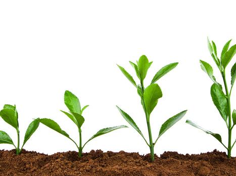 Four key sales pipeline metrics to track for aggressive growth - PandoDaily | #TheMarketingTechAlert | Way | Scoop.it