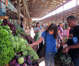 Sign-up for a CSA share @ the Ithaca Famers' Market this Saturday. | Organic CSA Farming | Scoop.it