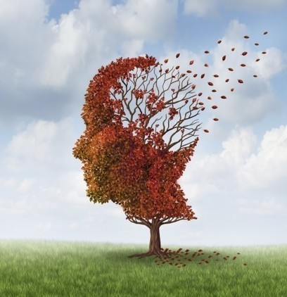 MIT scientists find evidence that Alzheimer's 'lost memories' may one day be recoverable | Paradigm Shifts - JS | Scoop.it