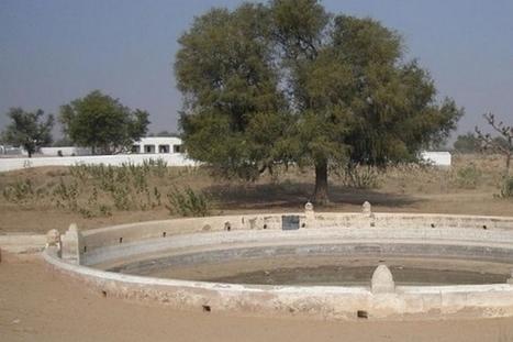 Rajendra Singh : restaurer le cycle de l'eau grâce à la Johad   Efficycle   Scoop.it