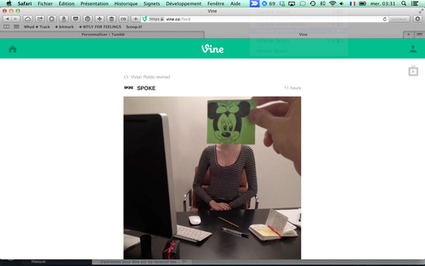 Visite Virtuelle de l'#expoperre comment participer | Cabinet de curiosités numériques | Scoop.it