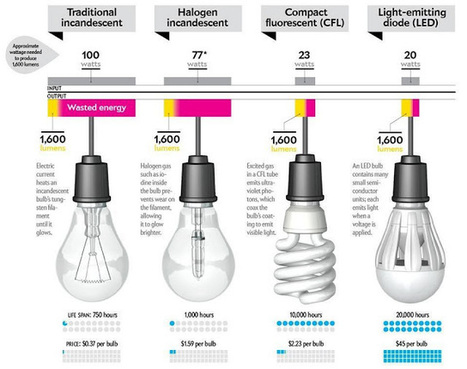 Lets Science Around: Comparision of Bulb Technology | ESL Science and Technology Resources | Scoop.it