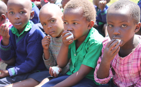 The Children and the Egg: Can a Simple Snack Change Lives in Rwanda?   Permaculture, Horticulture, Homesteading, Bio-Remediation, & Green Tech   Scoop.it