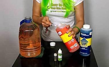 How to pH Cannabis & Stop Deficiencies | Grow Weed Easy | Grow Weed Easy | Scoop.it