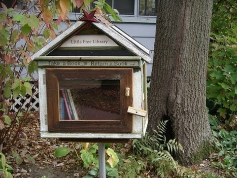 Little Free Library can help put a library on your corner [Boingboing]   bibliotheques, de l'air   Scoop.it