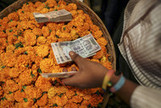 India Central Bank Holds Rates in Push to Stem Rupee Plunge - Bloomberg | Branded merchandise | Scoop.it