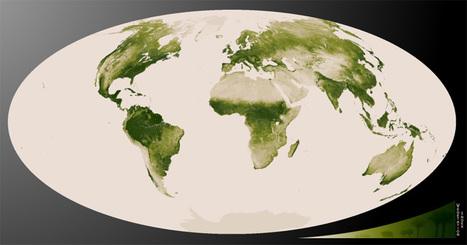 Vegetation as seen by Suomi NPP | Biosciencia News | Scoop.it