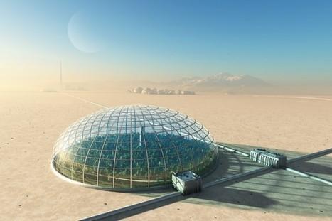 Scientists Grow Sweet Potatoes in Martian Greenhouse | CALS in the News | Scoop.it