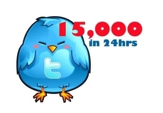 I will add You To Increase 15,000 Followers In Your Twitter Account Within Few Hours for $5 : jamesscott - My Cheap Jobs | facebook likes | Scoop.it