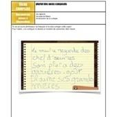 Tâche complexe: pluriel des noms composés | Teaching | Scoop.it