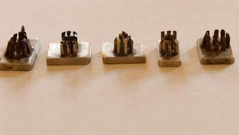 Stempels Auschwitz gevonden | KAP_VandenTorrenT | Scoop.it