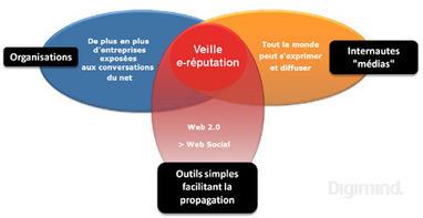 E-reputation : définition, typologie des contributeurs et risques liés   L'ADN des réseaux sociaux   L'E-Réputation   Scoop.it
