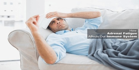 How Adrenal Fatigue Affects Our Immune System | Disease and Treatment | Scoop.it