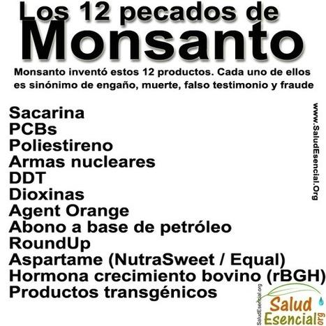 Iniciativa: Tribunal Internacional de la Haya contra Monsanto por « Crimen contra la Humanidad » en mayo 2016 | La R-Evolución de ARMAK | Scoop.it