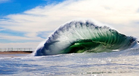 Blue-Bottle-like ~Wave | Life, The Universe & Everything.... | Scoop.it