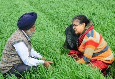"Sustainable Agriculture |  ""Bridging the knowledge gap between farmers and scientists"" - AlertNet | Geoflorestas | Scoop.it"