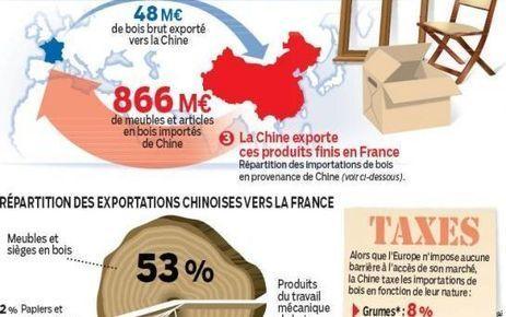 En Franche-Comté, les Chinois achètent de plus en plus de bois | Filière bois : Filière d'avenir | Scoop.it