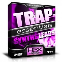 Download Trap Essentials - Synths and Leads FL Studio Loops | Hex Loops | smokez | Scoop.it