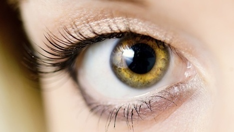 6 Nutrients to Prevent Vision Loss | General Health News | Scoop.it