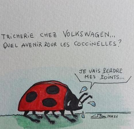 La bête à bon Dieu | Epic pics | Scoop.it