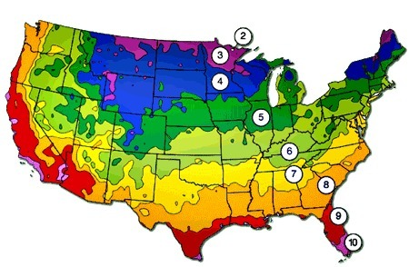 New zone maps may change what grows in your garden | Gardening Life | Scoop.it