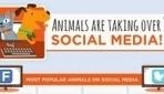 Animals Are Taking Over Social Media! - DesignTAXI.com   Public Relations & Social Media Insight   Scoop.it