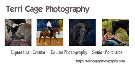 Preparing Your Horse For Photos/ Terri Cage | Horse and Rider Awareness | Scoop.it