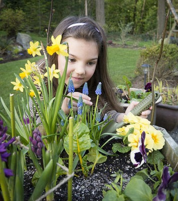 Ruby's spring garden | Life | St. Catharines Standard | Container Gardening | Scoop.it