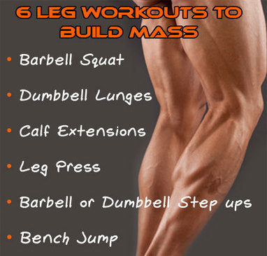 Best Leg Workouts For Mass Gain | Best Leg Workouts For Mass Gain | Scoop.it
