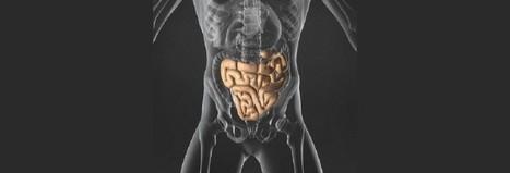 Les troubles digestifs à l'effort | Sport & Care | Scoop.it