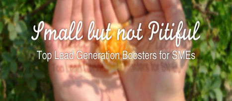 Small but not Pitiful: Top Lead Generation Boosters for SMEs   Tips for your lead generation   Scoop.it