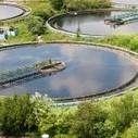 Que deviennent les boues des stations d'épuration ? | Traitement de l'eau par les UV par ABIOTEC | Scoop.it