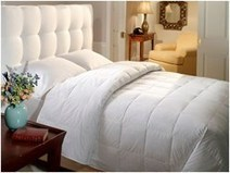 ExceptionalSheets.com Announces Top 5 Comforters to Fight the Bitter Cold of ... - PR Web (press release) | bedding comforter sets | Scoop.it