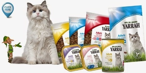 Information Resource on Cat Pet Products: Why is It Important To Choose Environmentally Friendly Eco Pet Products? | Information on Cat Litter | Scoop.it