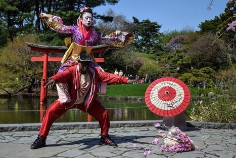Japanese Cherry Blossom Festival Sakura Matsuri returns to Brooklyn - Brooklyn Daily Eagle | Zen Gardens | Scoop.it