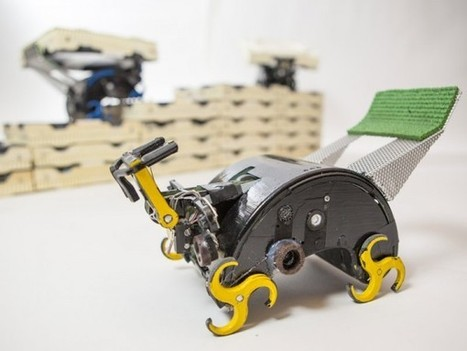 Termite-Inspired Robots Build With Bricks | WAPJ News | Scoop.it