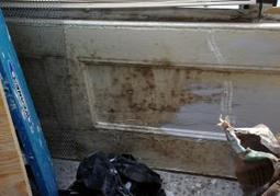 Mold could be linked to Parkinson's disease: study   alternative medicine   Scoop.it