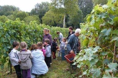 Un week-end dans les vignes | Agriculture en Dordogne | Scoop.it