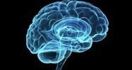 Un pacemaker cérébral contre la maladie d'Alzheimer   LETRAS Y MAS LETRAS   Scoop.it