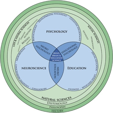 Neuroscience, teaching, psychology and education (Mind, Brain, and Education science) | omnia mea mecum fero | Scoop.it