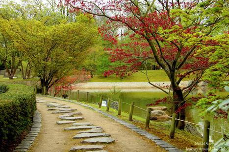 Hasselt Japanese Garden in Hasselt, Belgium | Journey Around The ... | Japanese Gardens | Scoop.it