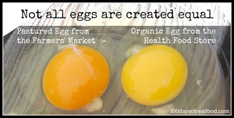 Egg Labels: What To Look For - 100 Days of Real Food | Holistically Fit | Scoop.it