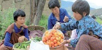 Bhutan Looks To Become World's First 100% Organic Country | Bhutan | Scoop.it