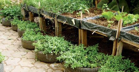 Développer des villes plus vertes: L'approche de la FAO - Microjardins | Agricultura Urbana de Rosario | Scoop.it